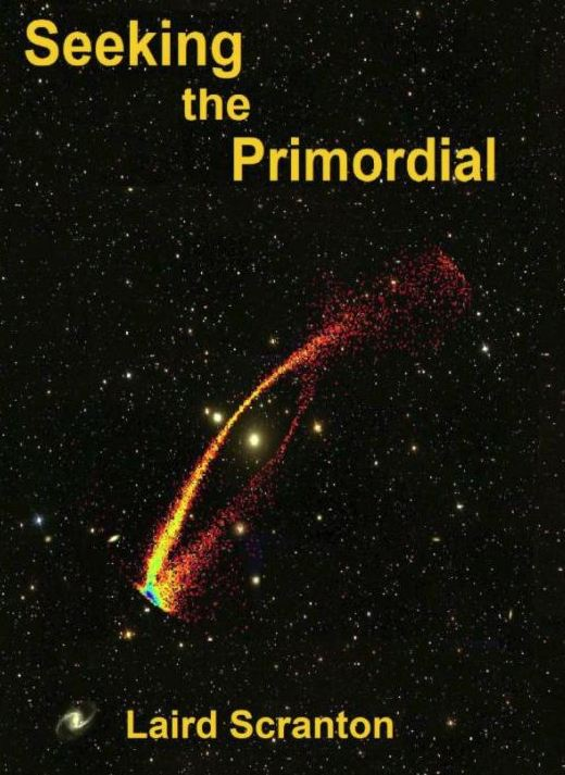 Seeking the Primordial