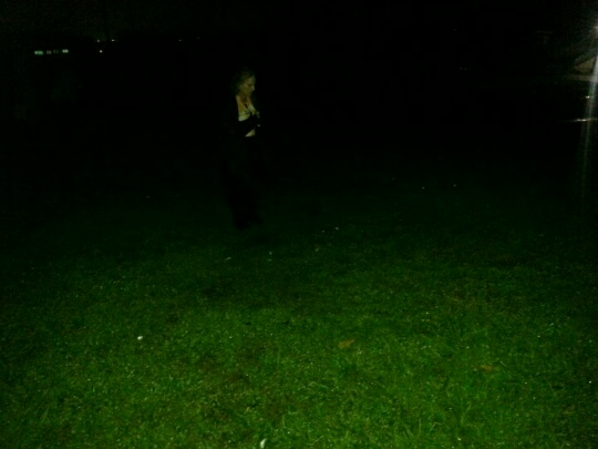 Picture 1 with orbs