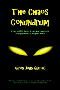 The Chaos Conundrum by Aaron John Gulyas (2013)